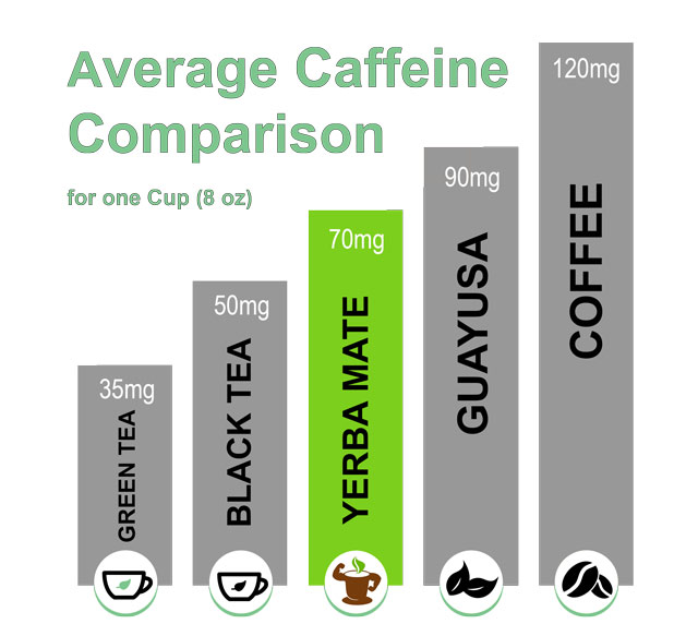 Yerba mate caffeine level and in other caffeinated beverages - organicmate.net