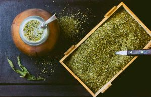 Yerba mate bodybuilding